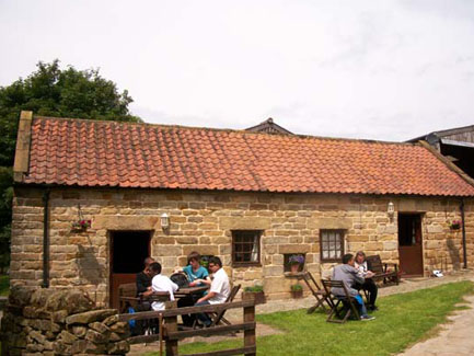 Visitors enjoying the open space outside the cottages in the sunshine.